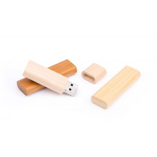 USB Stick Holz Limb